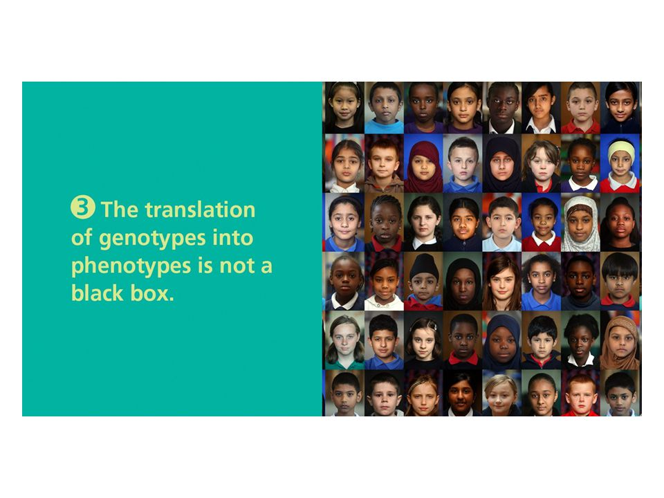 Section 7-3 Opener Phenotypic diversity has multiple sources and is all around us. (The photo shows schoolchildren from London.)