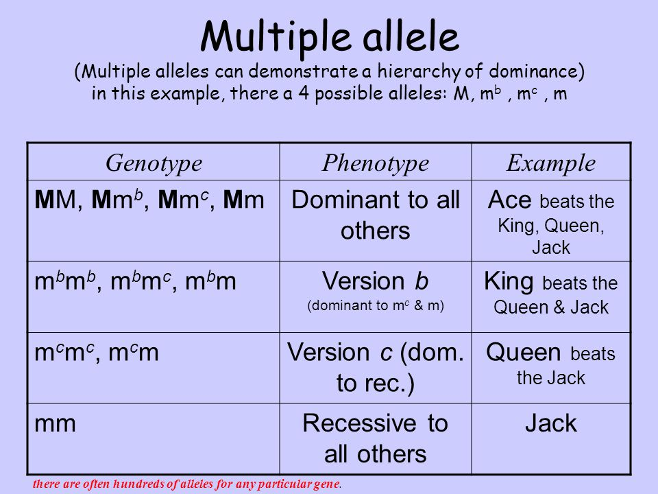 Dominant And Recessive Alleles Chart Non-Mendelian Genetics...