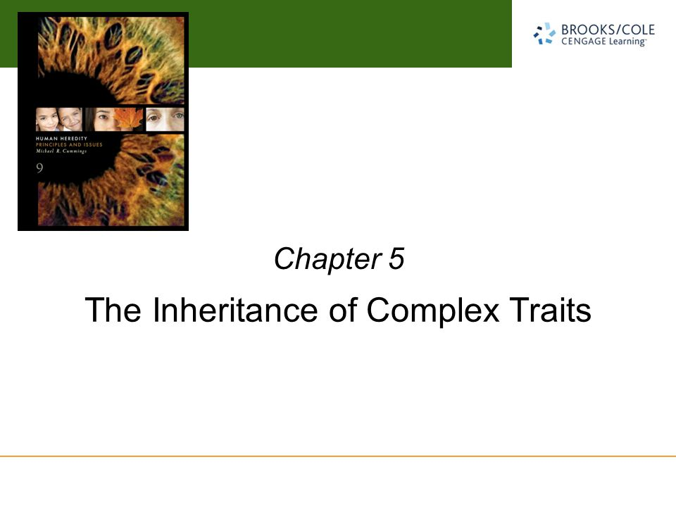 three principles of inheritance that described the transmission of genetic traits developed by grego