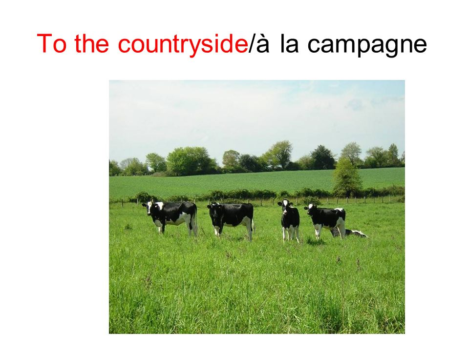 To the countryside/à la campagne