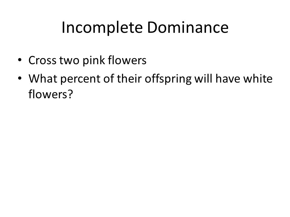 Incomplete Dominance Cross two pink flowers