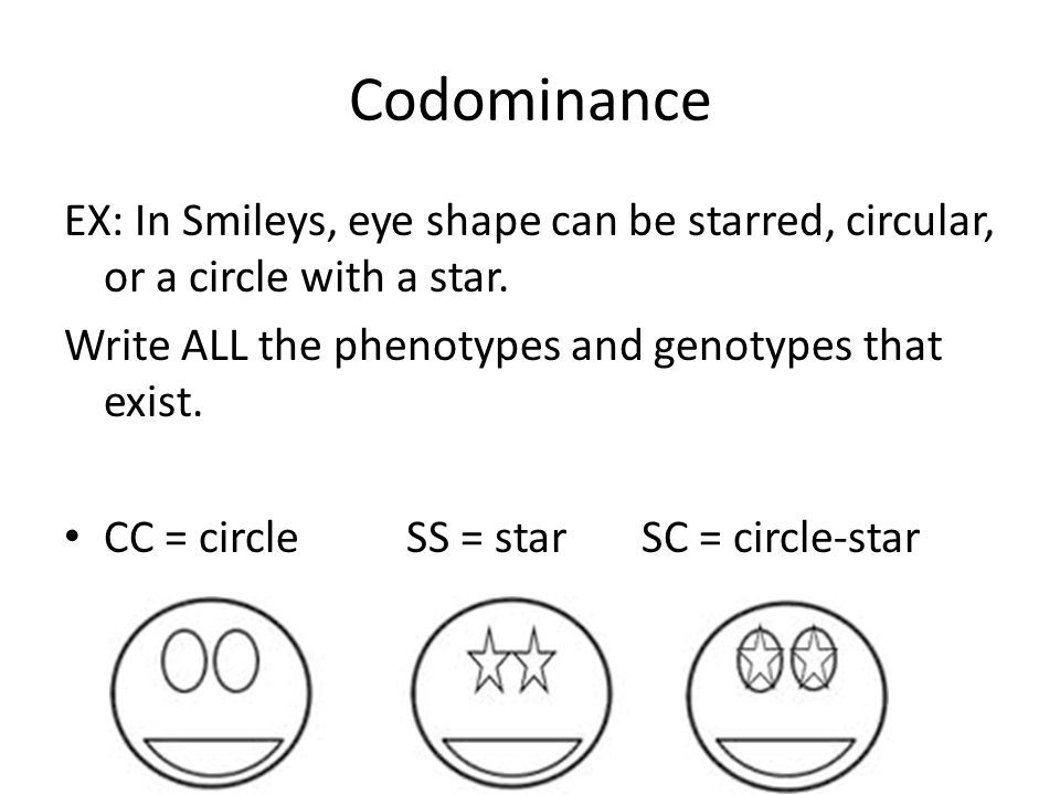 Codominance EX: In Smileys, eye shape can be starred, circular, or a circle with a star. Write ALL the phenotypes and genotypes that exist.