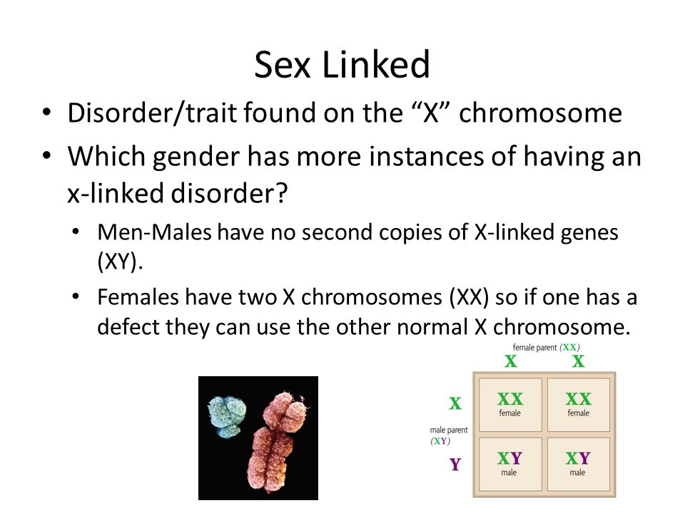 Sex Linked Disorder/trait found on the X chromosome