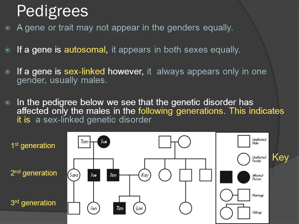 Pedigrees Key A gene or trait may not appear in the genders equally.