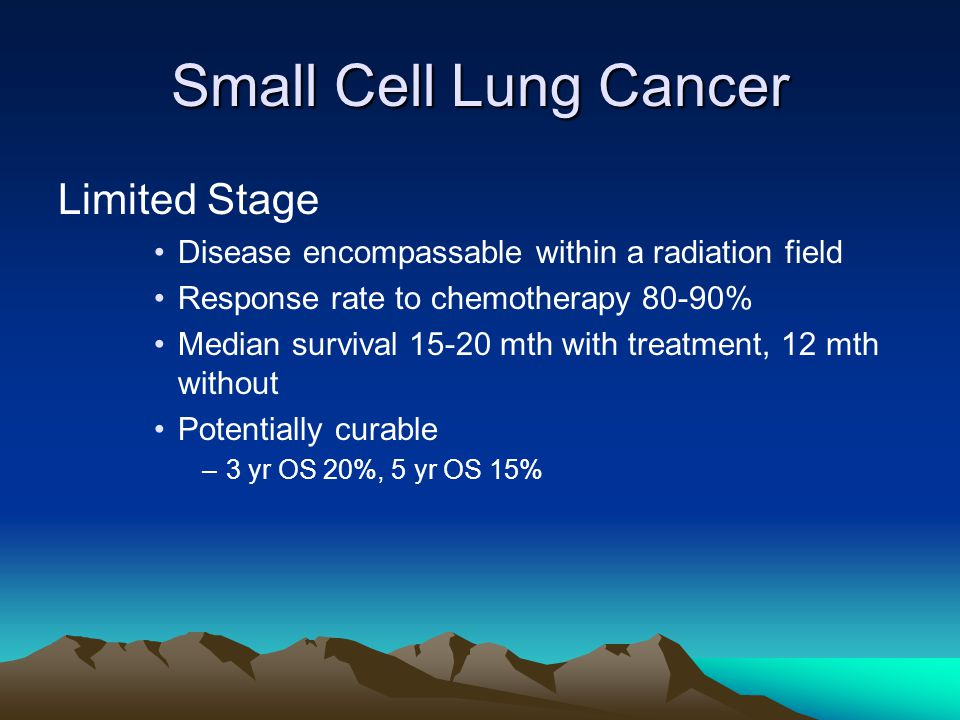 Small Cell Lung Cancer Limited Stage