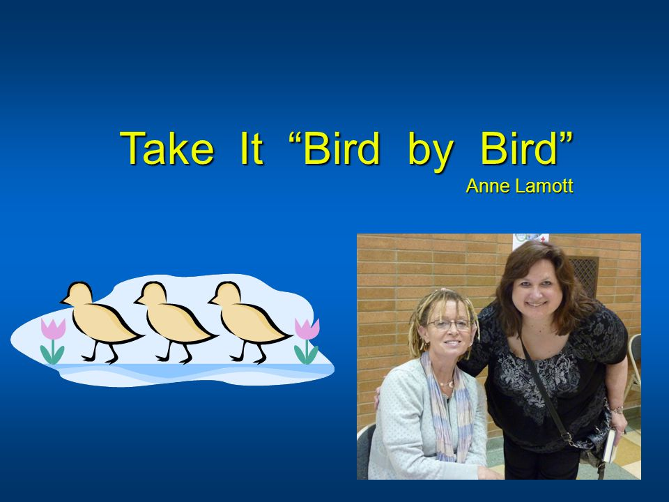 Take It Bird by Bird Anne Lamott