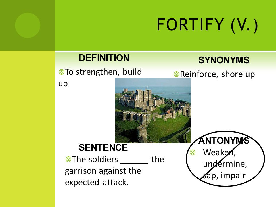 High Quality 13 FORTIFY ...