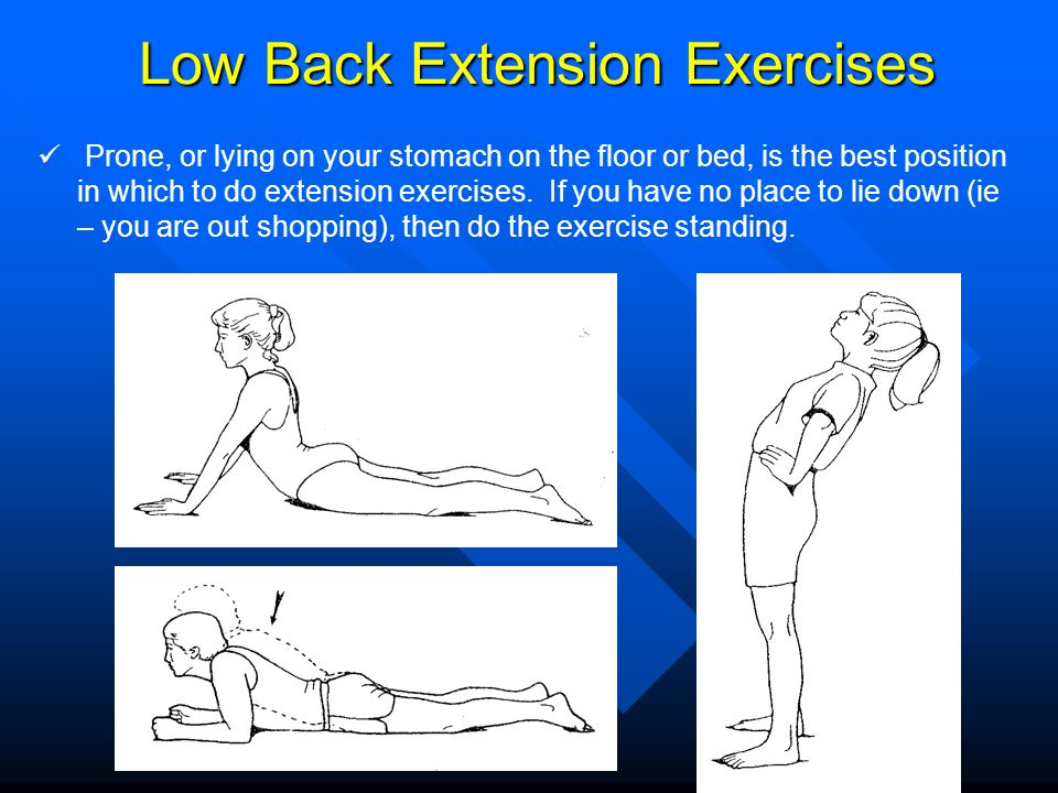 Low Back Extension Exercises