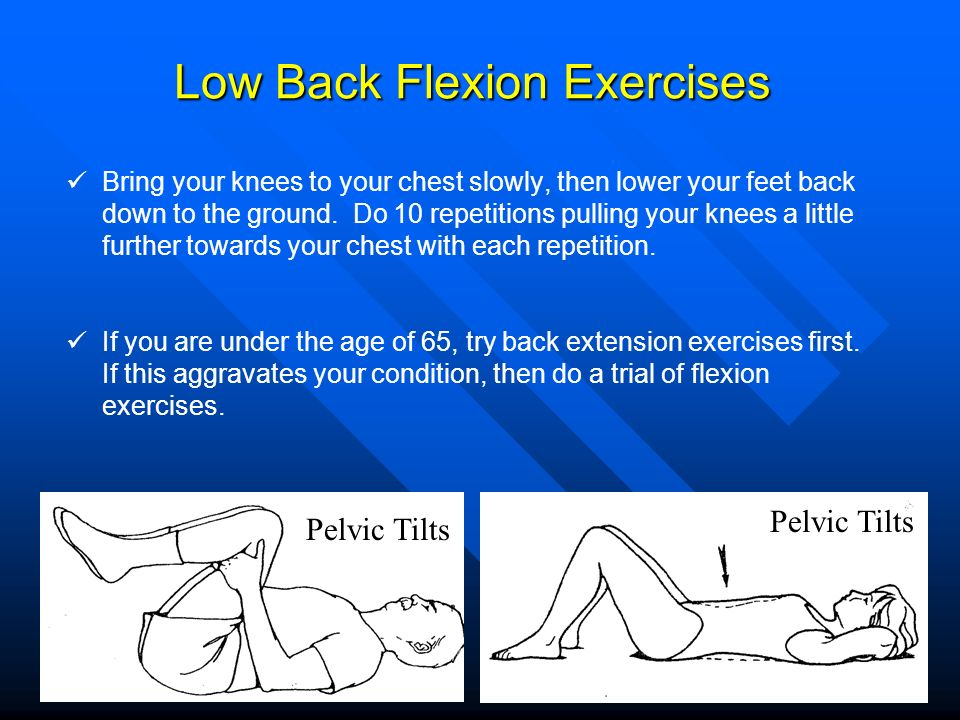 Low Back Flexion Exercises