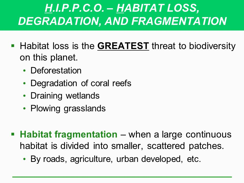 H.I.P.P.C.O. – HABITAT LOSS, DEGRADATION, AND FRAGMENTATION