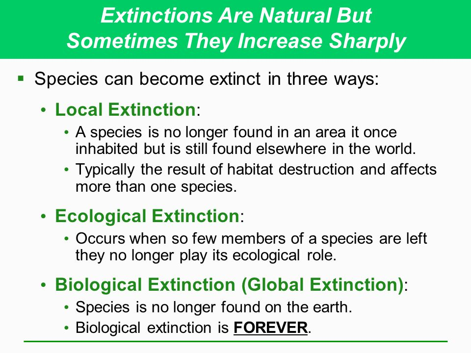 Extinctions Are Natural But Sometimes They Increase Sharply