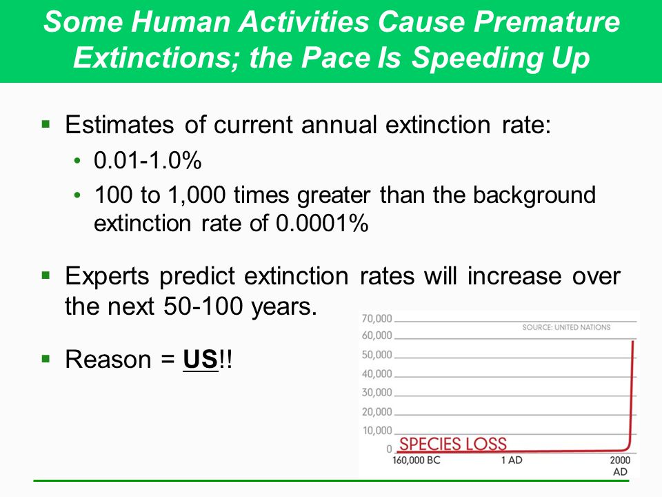 Some Human Activities Cause Premature Extinctions; the Pace Is Speeding Up