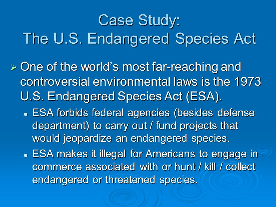 endangered species act of 1973 essay Access to over 100,000 complete essays first listed as an endangered species in 1973 the endangered species act still helps animals who are endangered or.