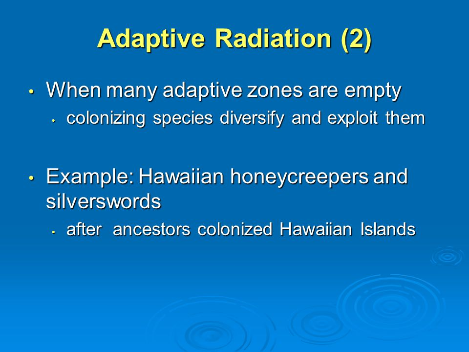 speciation and macroevolution ppt video online download