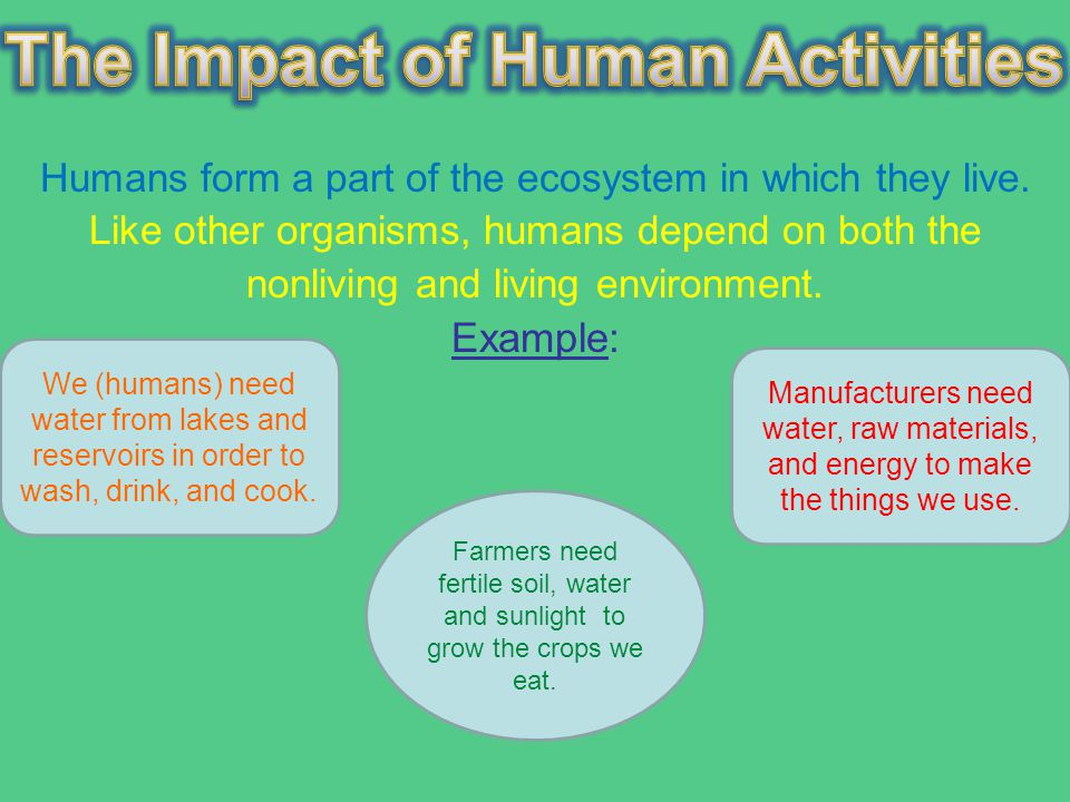 the effect of human activities to lake ecosystem essay Every time humans interrupt the natural water cycle there will be an effect  in  the cities of brampton, mississauga, toronto and others bordering lake ontario.