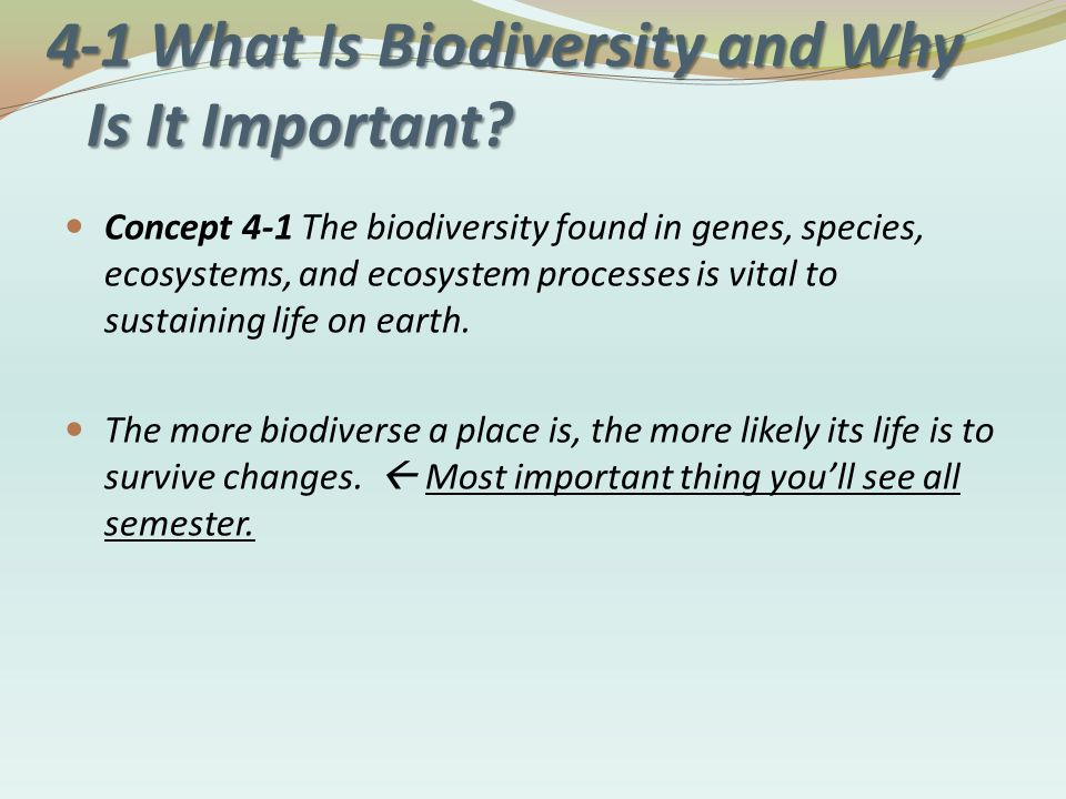 understanding biodiversity and its maintenance Biodiversity is central to ecosystem functioning and, hence, the existence and maintenance of ecosystems services for example: insects, bats, birds.