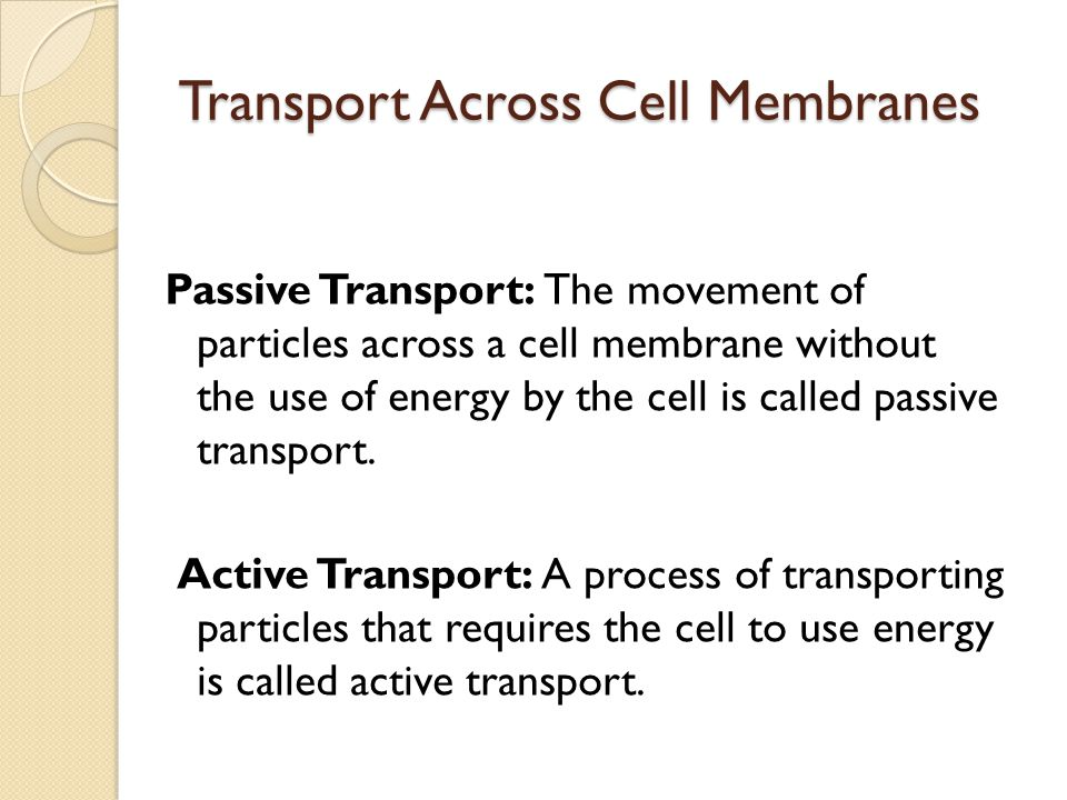 a better understanding of the movement of particles across membranes