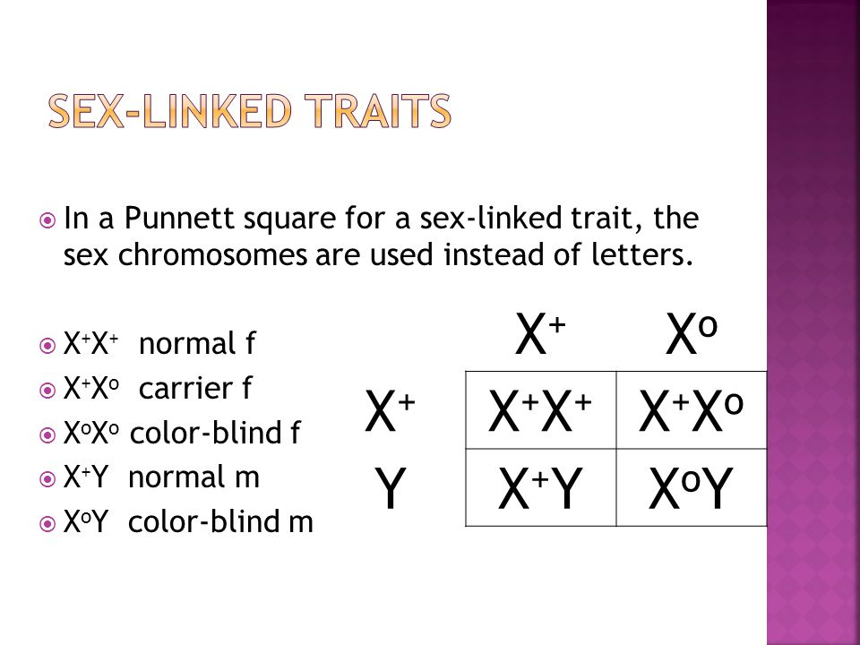 examples of sex linked traits