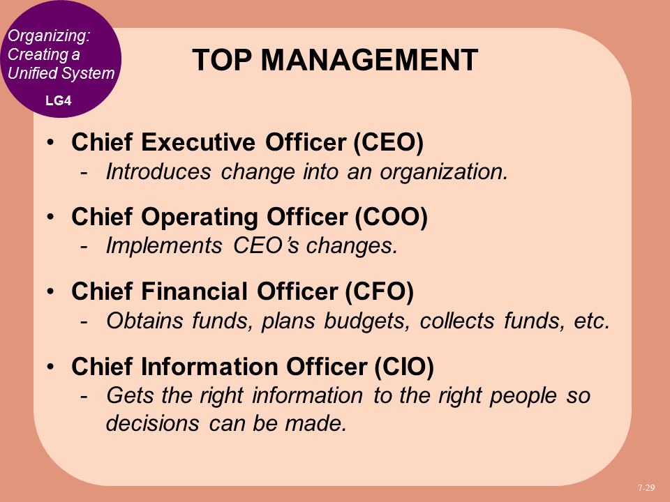 Management and leadership ppt download - Chief financial officer cfo ...