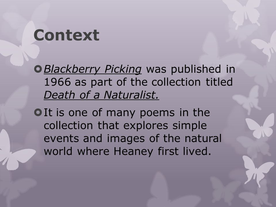 blackberry picking 2 essay