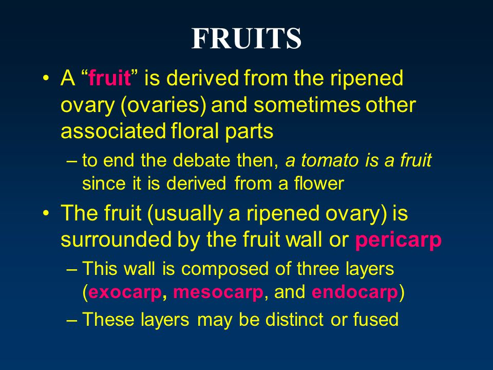 FRUITS A fruit is derived from the ripened ovary (ovaries) and sometimes other associated floral parts.
