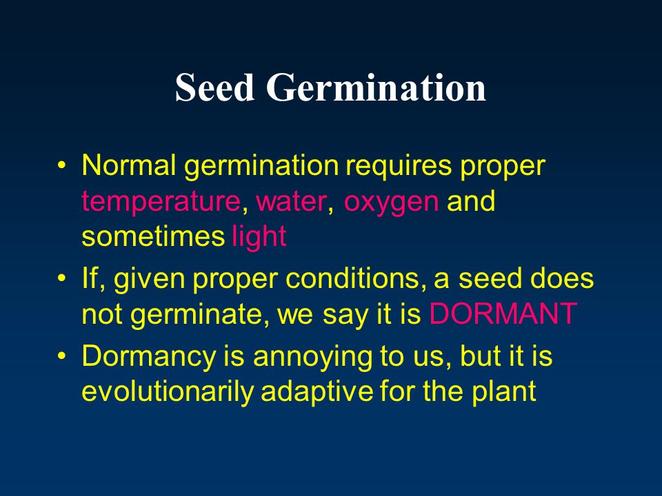 Seed Germination Normal germination requires proper temperature, water, oxygen and sometimes light.