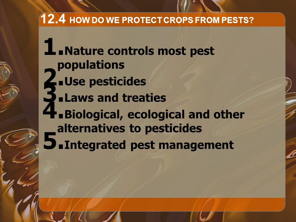 12.4 HOW DO WE PROTECT CROPS FROM PESTS