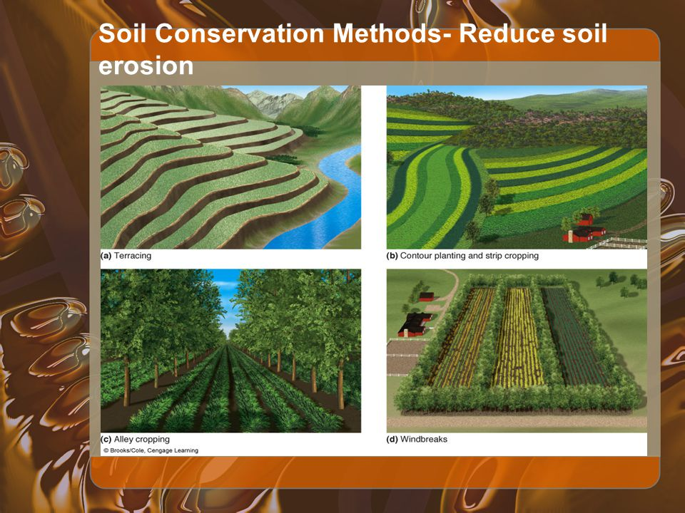soil erosion reduction Higher sediment yield level than did fallow land with crop residue, which  facilitated sediment yield reduction along with the soil conservation.