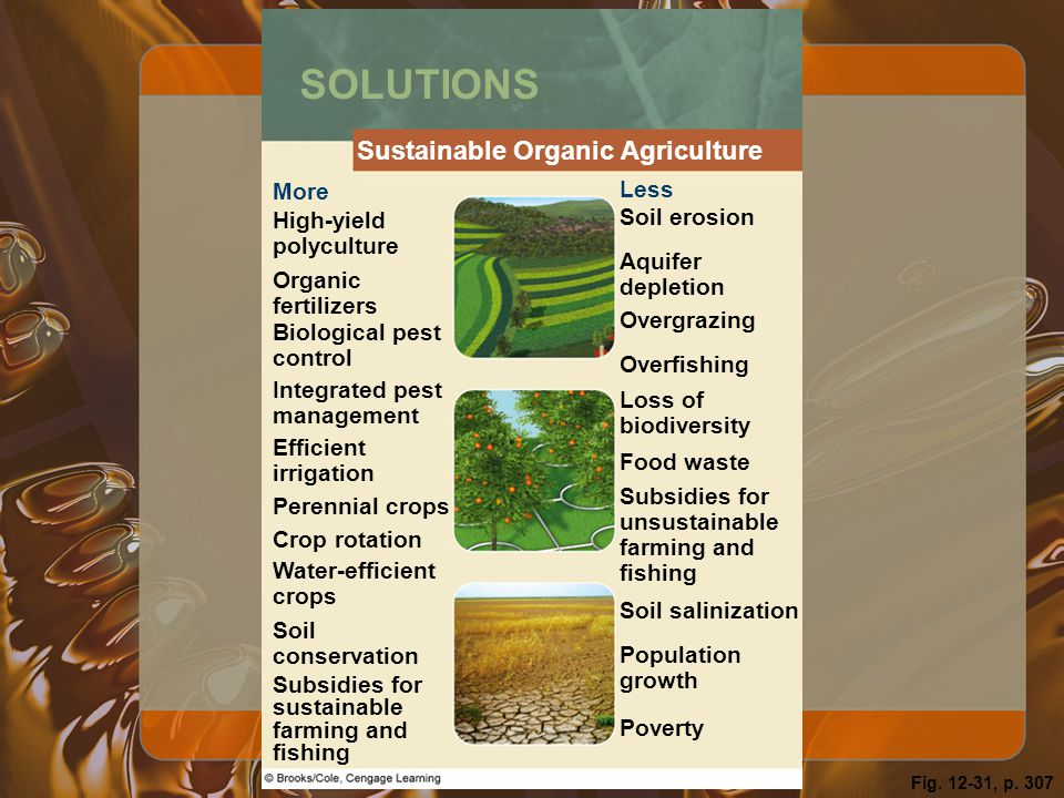 SOLUTIONS Sustainable Organic Agriculture More Less