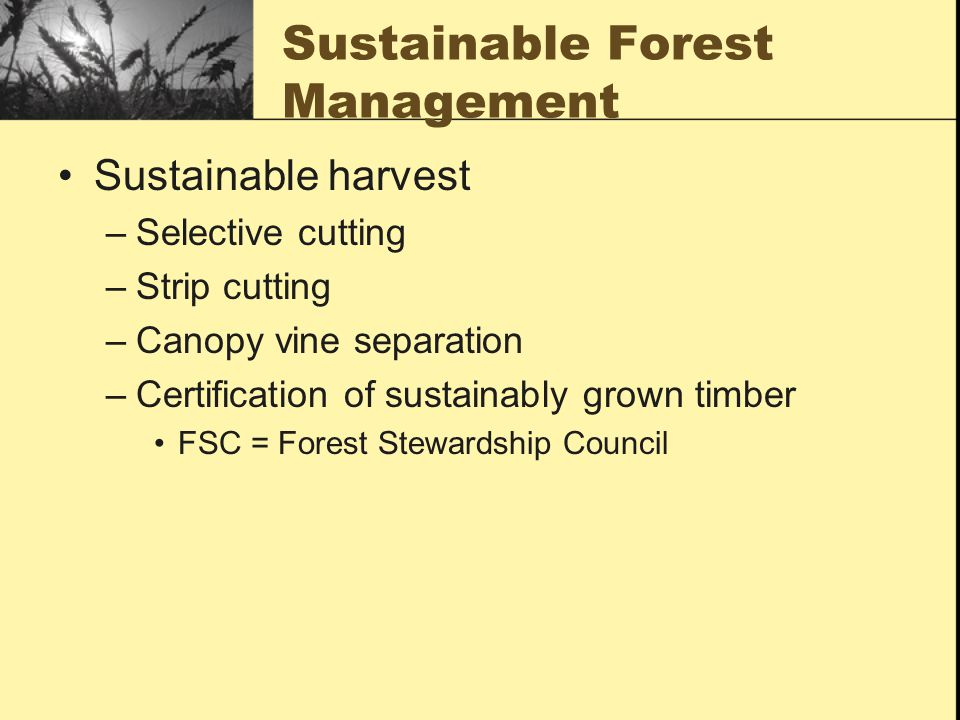 Sustainable Forest Management ~ Land use terrestrial biodiversity and public lands ppt
