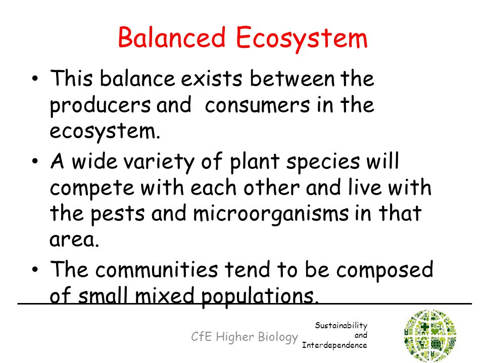 Balanced Ecosystem This balance exists between the producers and consumers in the ecosystem.