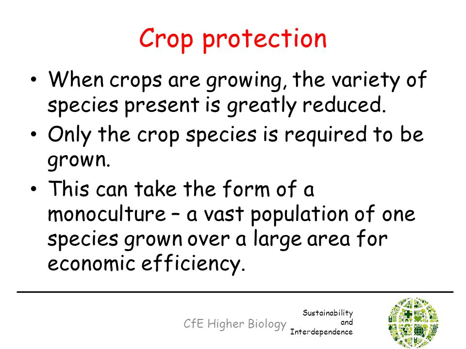 Crop protection When crops are growing, the variety of species present is greatly reduced. Only the crop species is required to be grown.