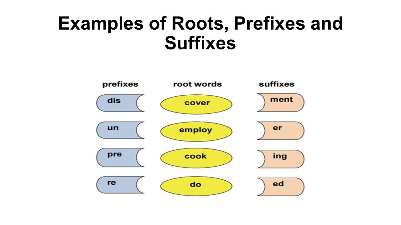 7 examples of roots prefixes and suffixes