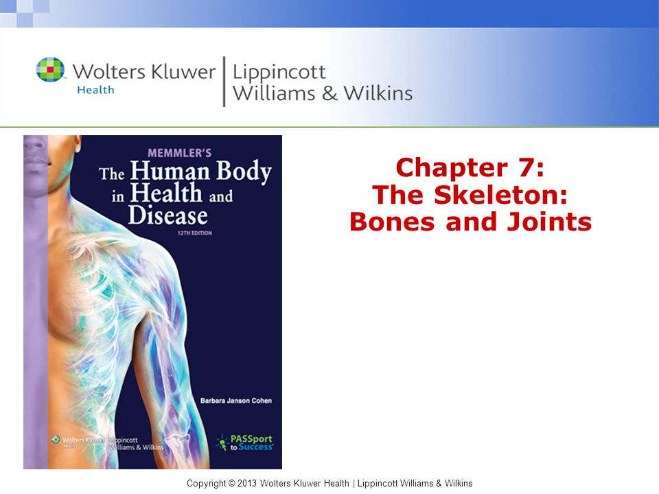 Chapter 7 The Skeleton Bones And Joints Ppt Video Online Download