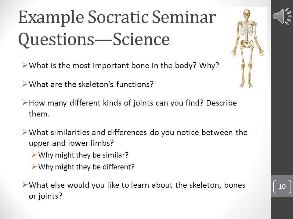socratic seminar questions essay example Free essay: drama unit socratic seminar questions part 1: a streetcar named desire 1 blanche who is homeless, comes to her sister's house at the beginning.