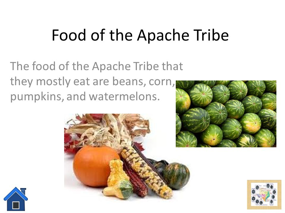 What Food Do Native American Eat