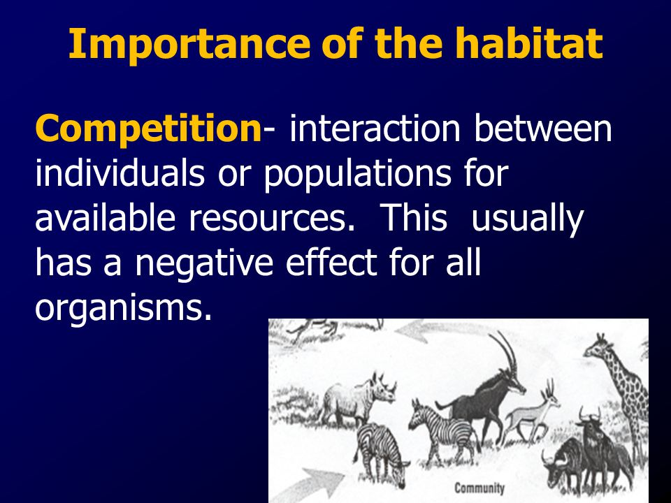 Importance of the habitat