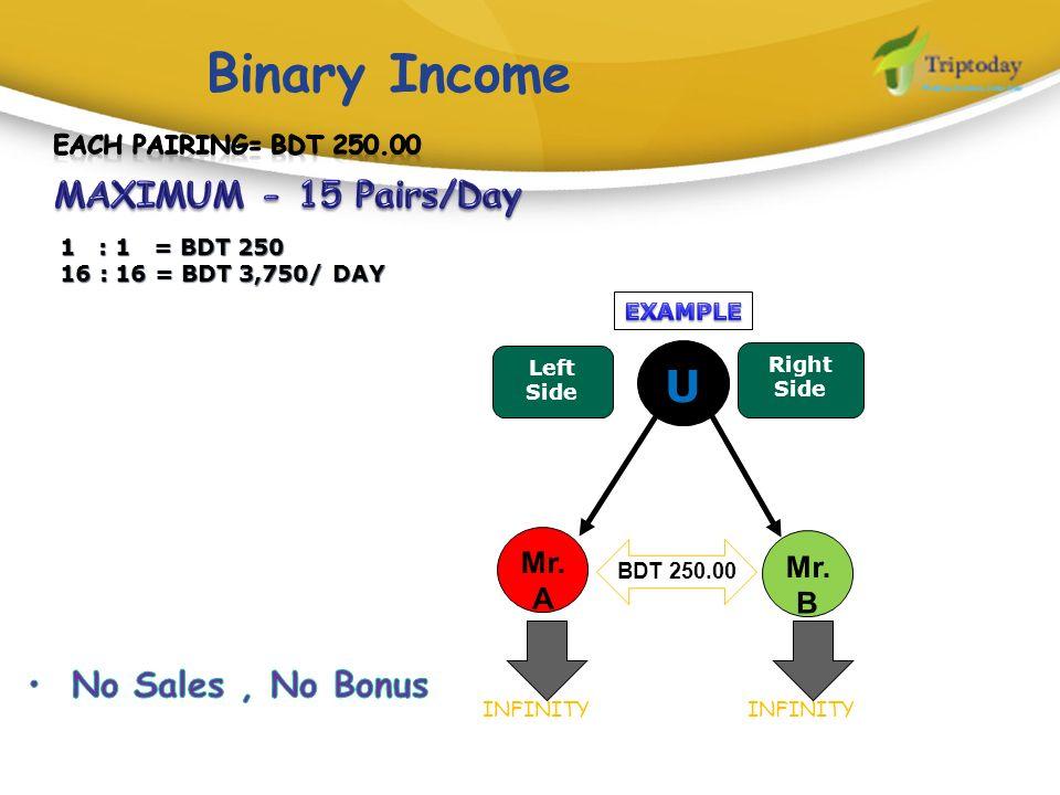 Binary Income U MAXIMUM - 15 Pairs/Day No Sales , No Bonus Mr.A Mr.B