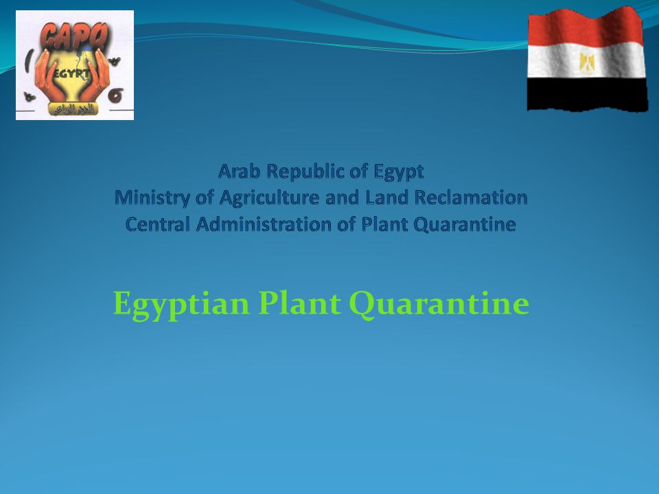 Egyptian plant quarantine ppt video online download.