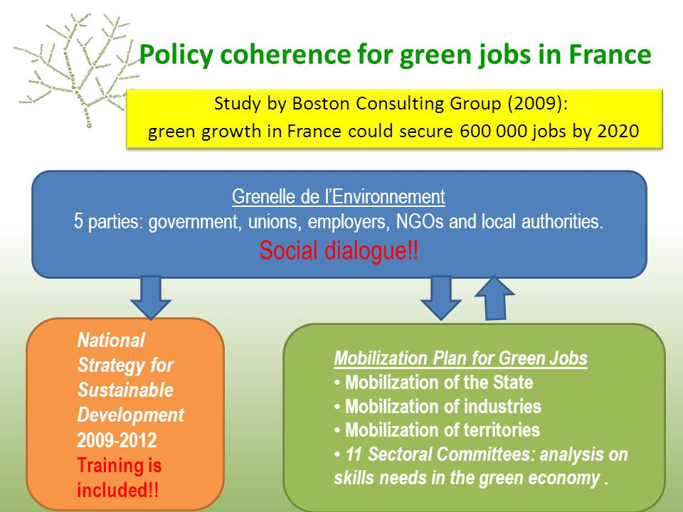 Policy coherence for green jobs in France