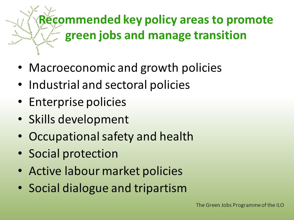 Recommended key policy areas to promote green jobs and manage transition