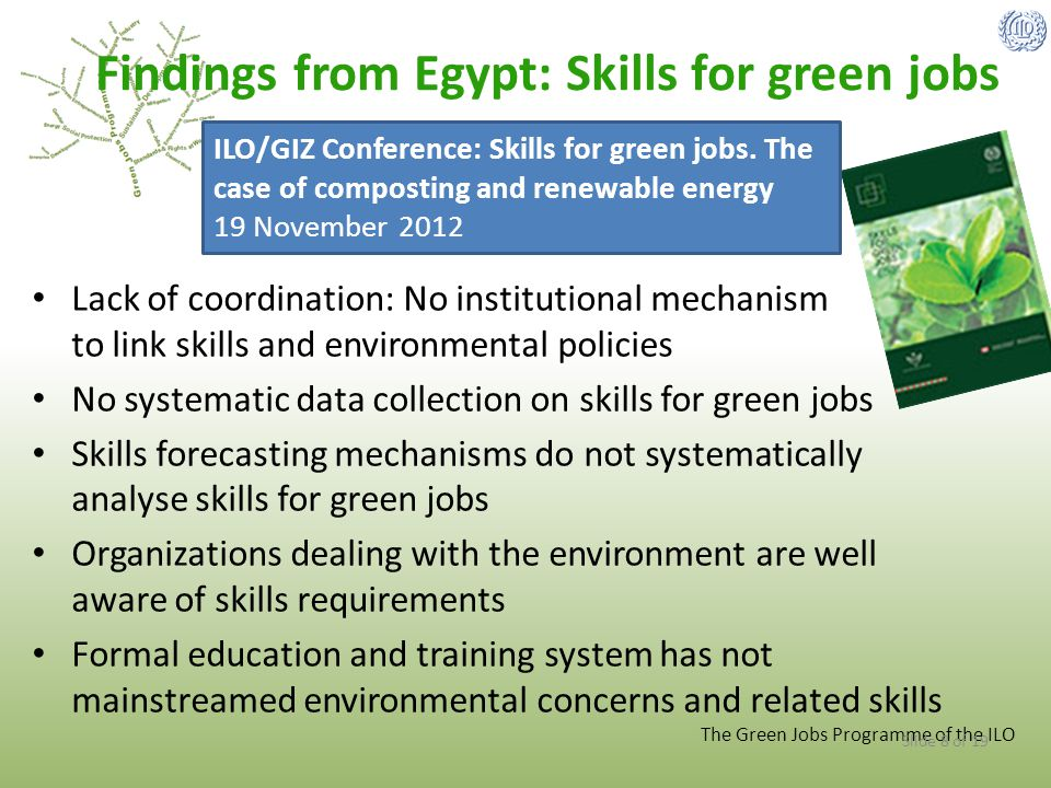 Findings from Egypt: Skills for green jobs