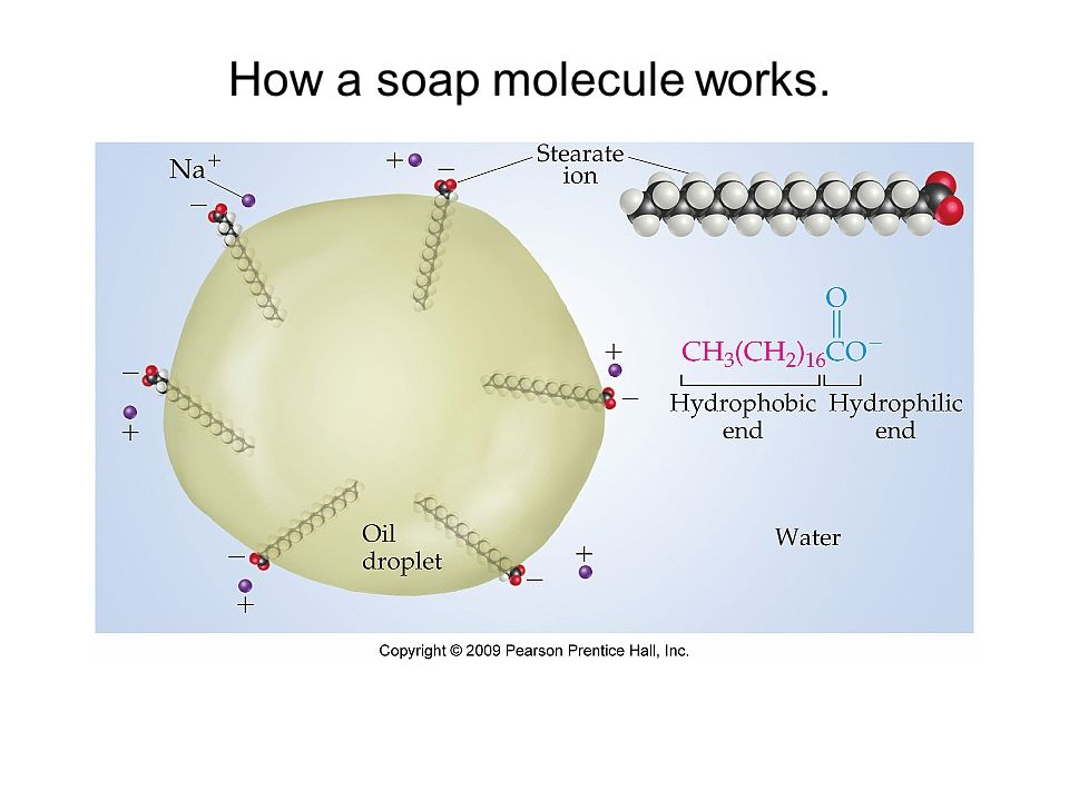 How a soap molecule works.
