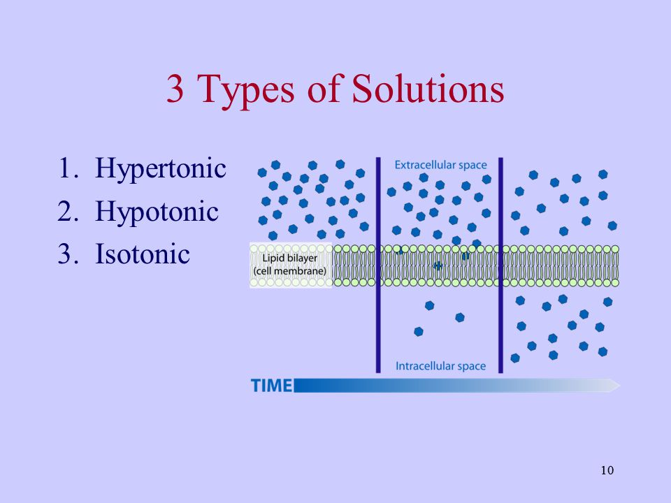 3 Types of Solutions Hypertonic Hypotonic Isotonic 10