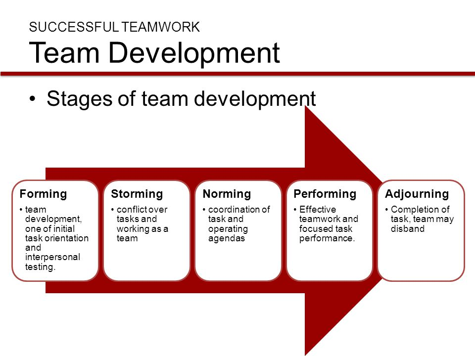 The importance of teams and teamwork