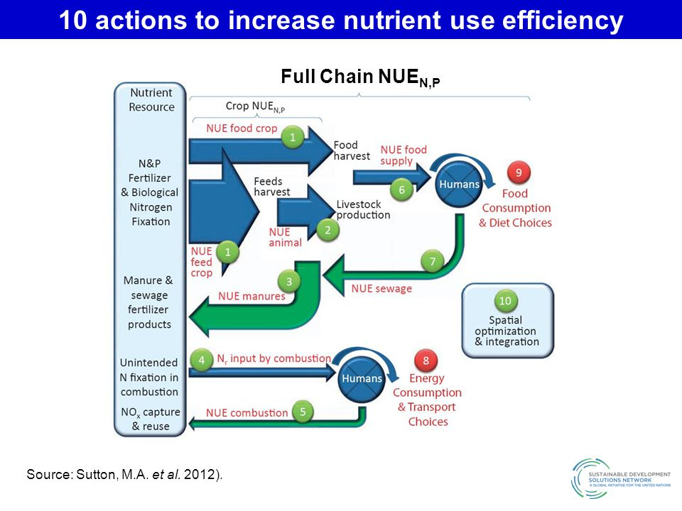 10 actions to increase nutrient use efficiency
