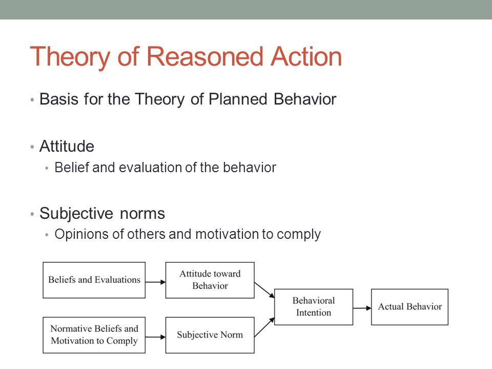 theory of reasoned action essay