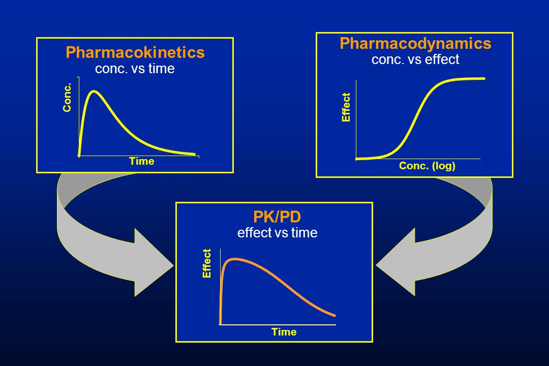 pk pd What's in between dose and response pharmacokinetics, pharmacodynamics, and statistics marie davidian  greenberg lecture i: pk, pd, and statistics 1 outline 1.