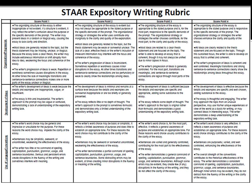 Expository writing essay rubric