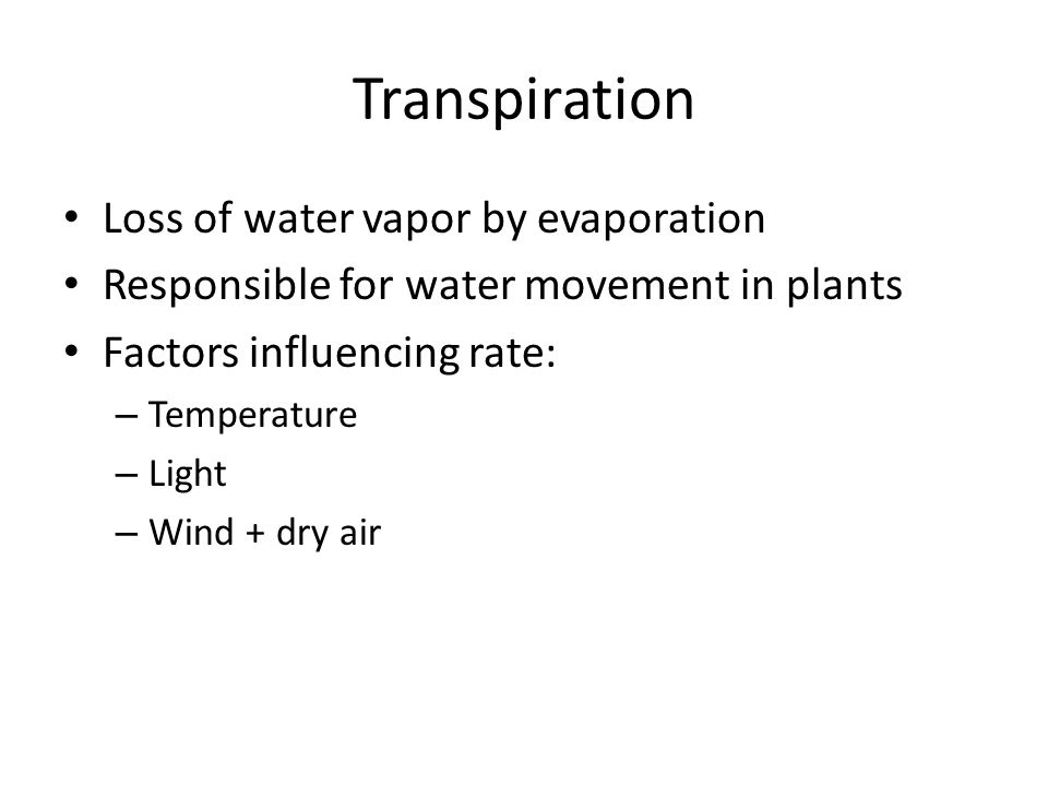 Transpiration Loss of water vapor by evaporation